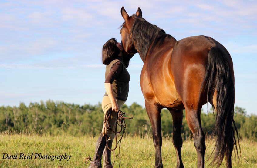horse Euthanasia