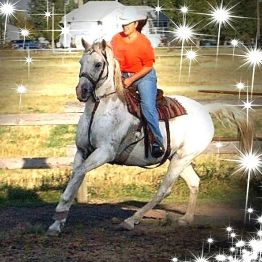 horse bereavement
